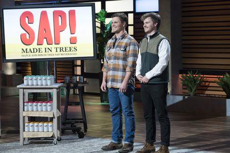 sap maple